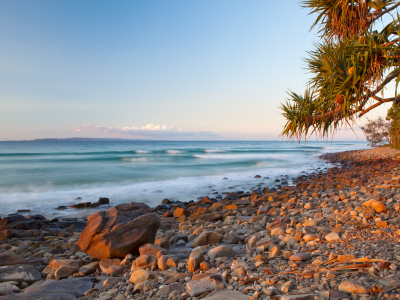 Image showing trees, rocks and beach at Noosa