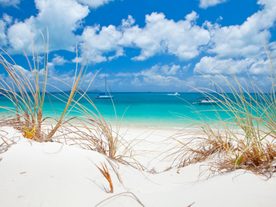 Image showing the sand and water of Whitehaven Beach in the Whitsundays