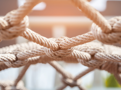 Image of knotted ropes forming a structure
