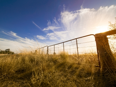 Image of a farm gate in a field