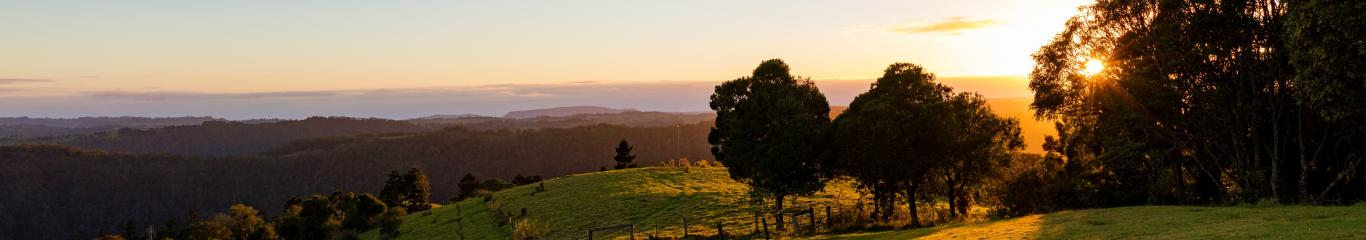 Sunrise at Gold Coast hinterland