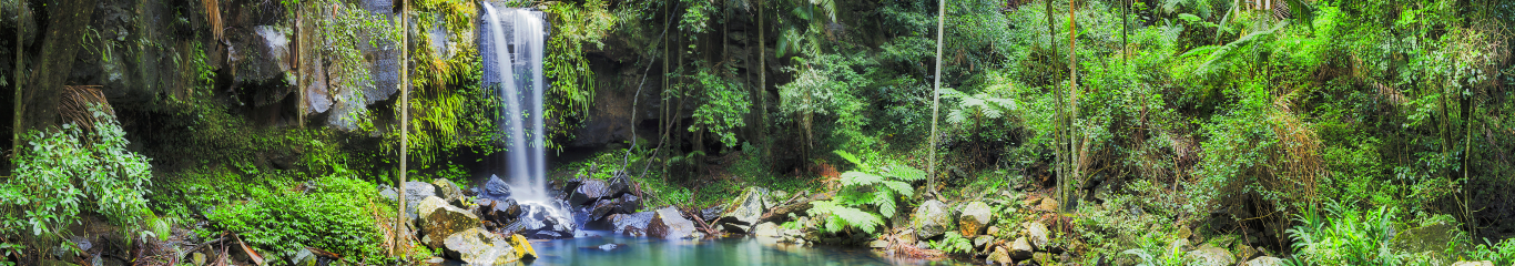 Image of a waterfall from Mount Tambourine Queensland